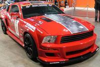 Mustang_d12009